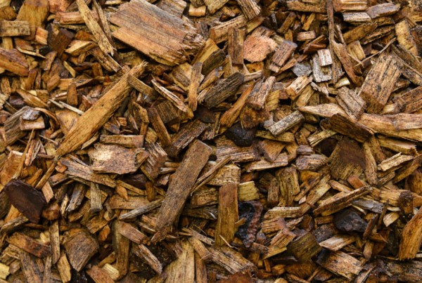 Forest_Mulch