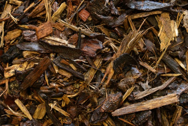 Milled_Pine_Mulch