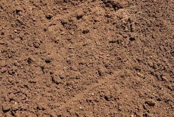 Premium_Organic_Soil