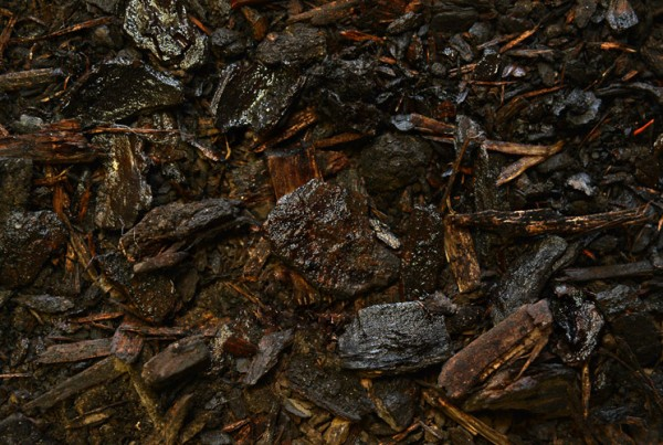WaterSaver_Mulch